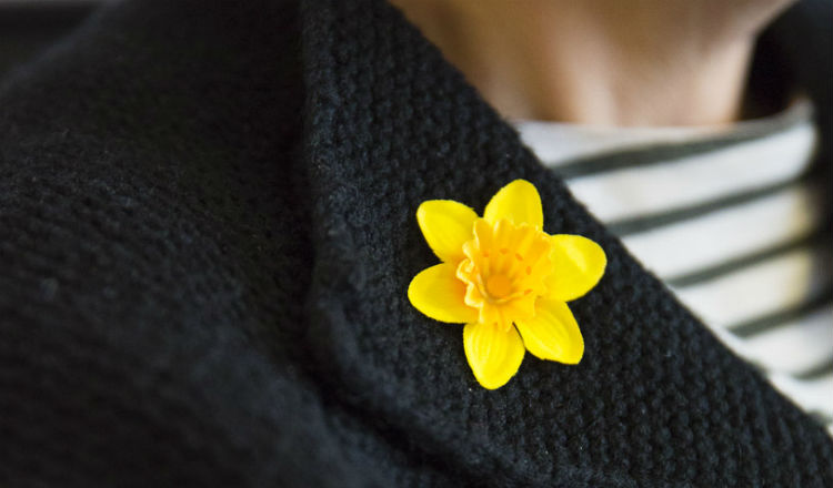 The Marie Curie daffodil pin on a jacket