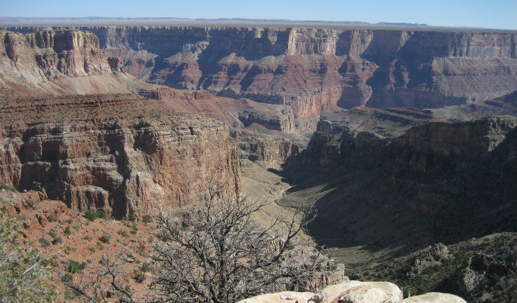 Grand Canyon Marie Curie charity trek