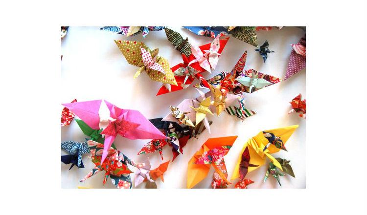 Colourful Crane Donation